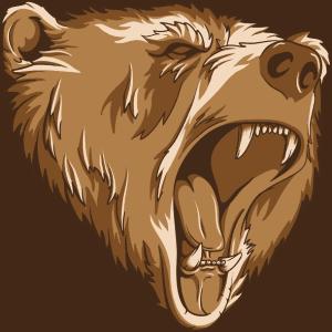 Bear Spray 101: Stopping an Attacking Bear